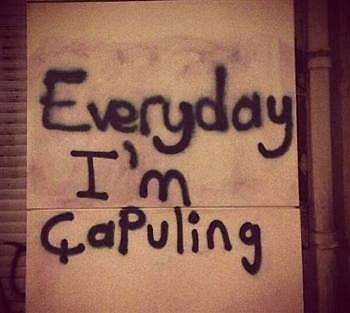 Everyday I'm Chapuling